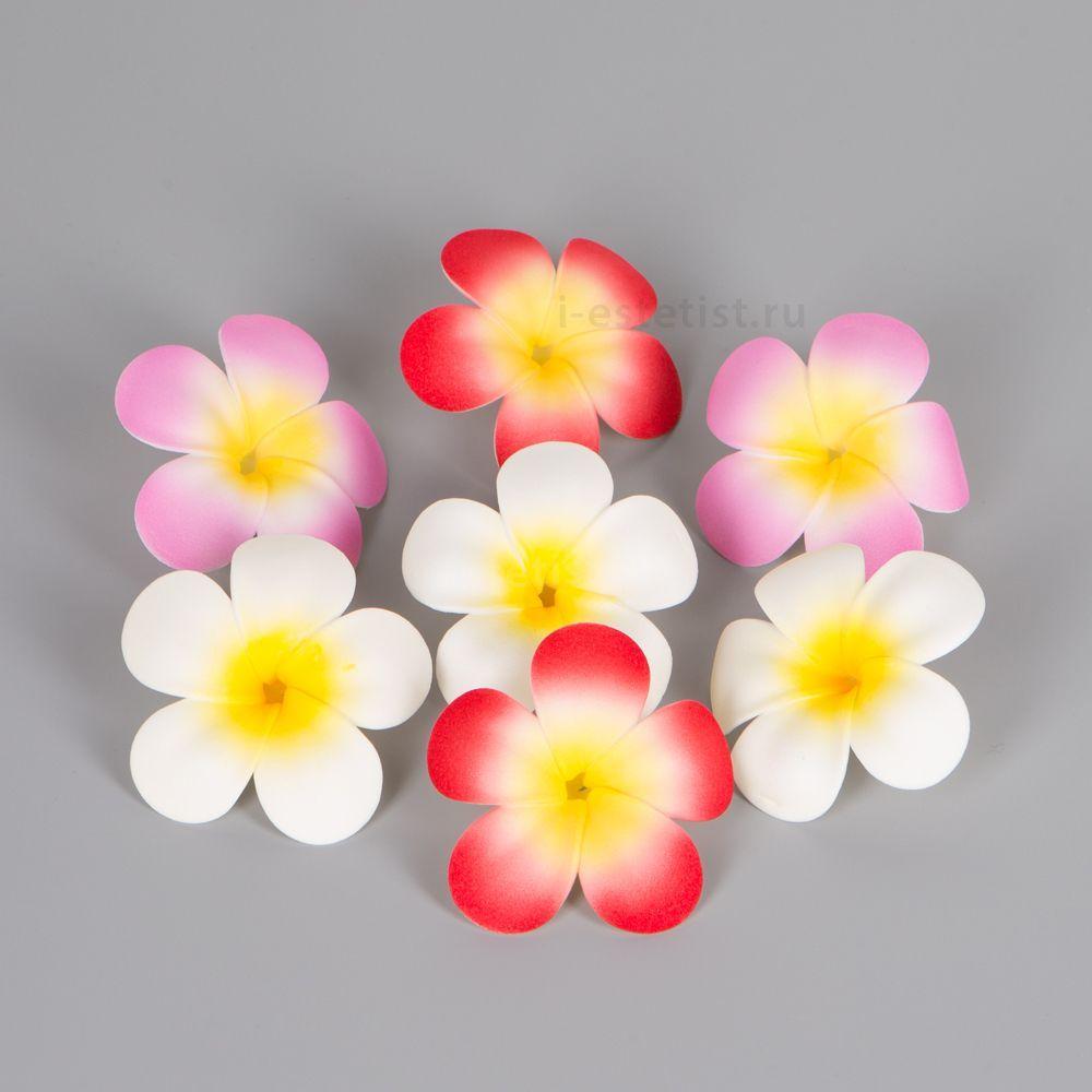 Цветочки франжипани